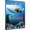 Fascinant Recif De Corail 3d - Volume 1 - Spectacle Captivant [blu-ray 3d]